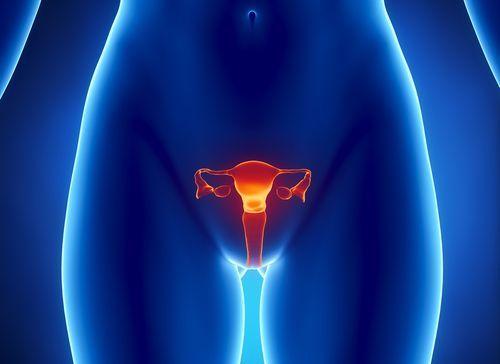 Ерозія шийки матки: методи лікування, відновлення після лікування ерозії