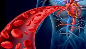 Як зробити очищення крові в домашніх умовах засобами народної медицини