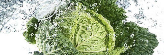 Корисні властивості капусти і рецепти страв з неї