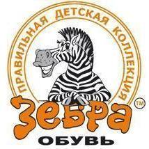 zebra_kartinka.jpg